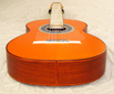 SH1927-spruce-white-ovang-orange-23-B